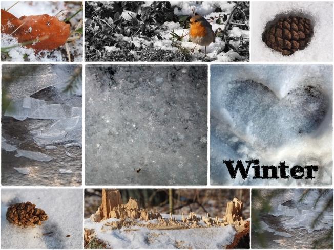 1 - Winter
