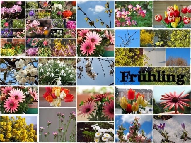 2 - Frühling