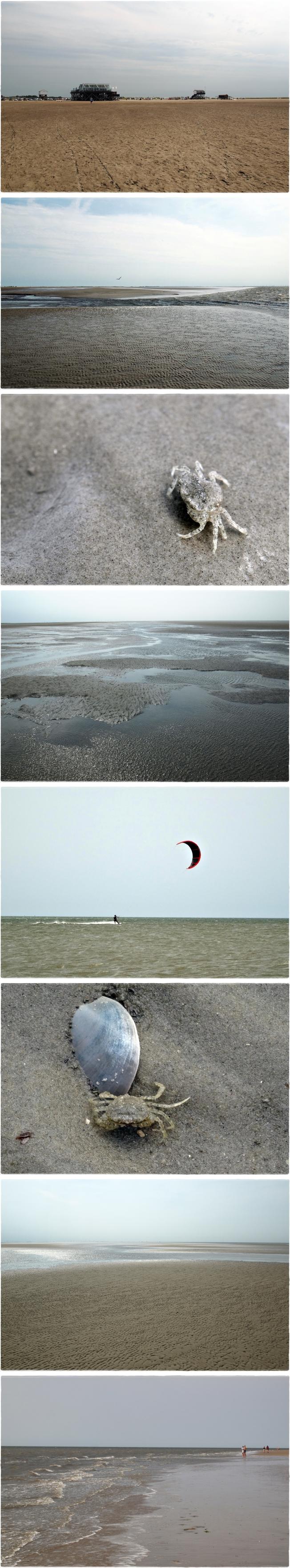 Meeresliebe