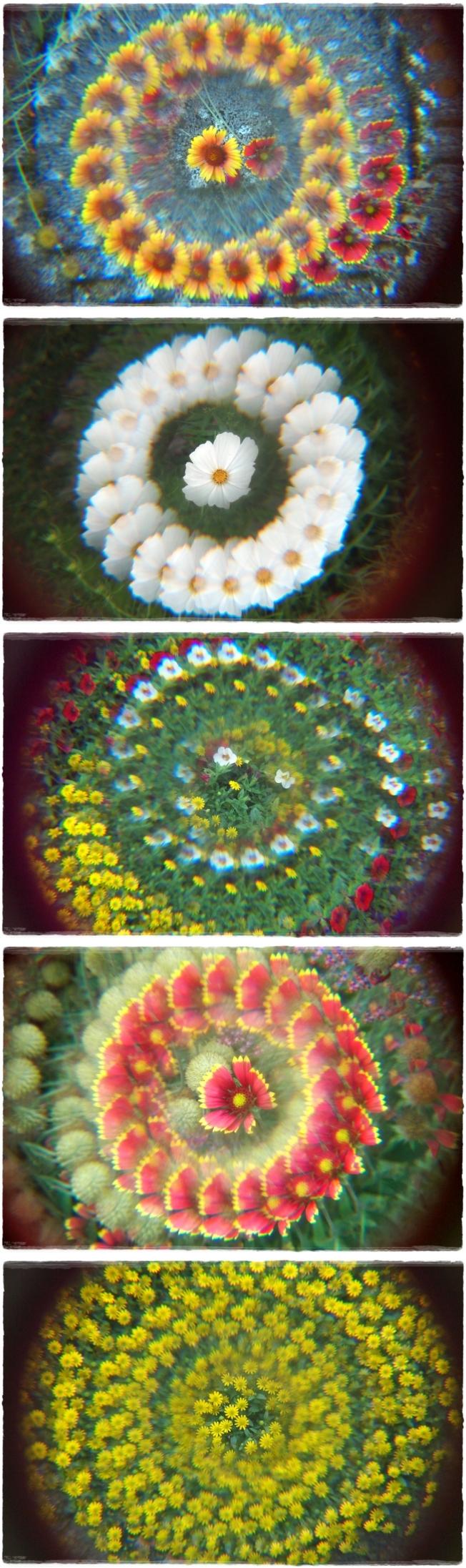 Blumenspielerei