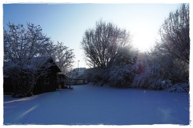 Winterheimat