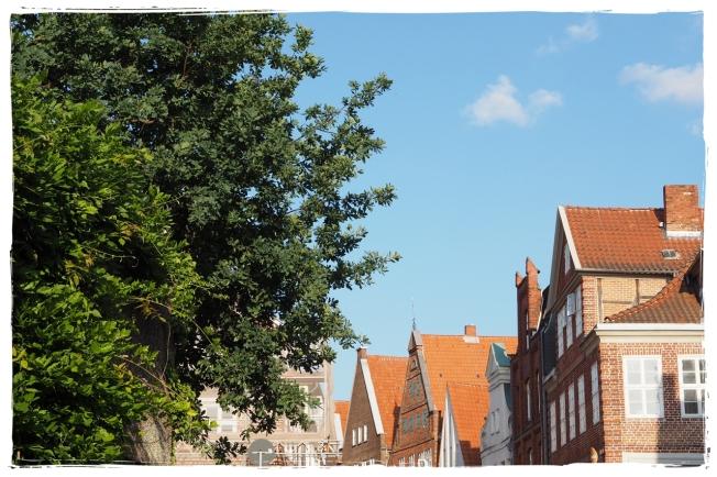 Lüneburg4
